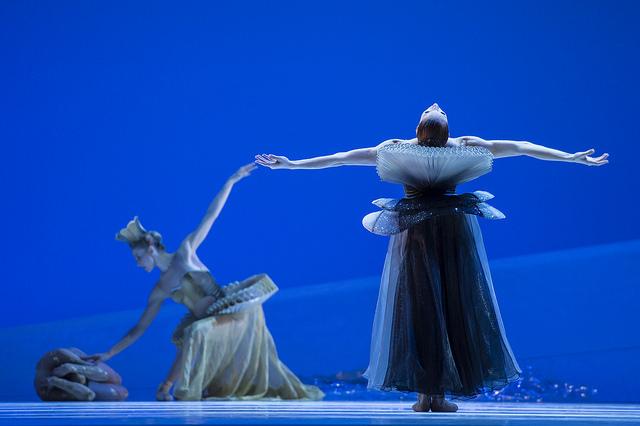 Danseuses des Ballets de Monte-Carlo sur scène.